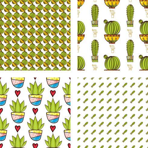 Establecer patrones sin fisuras de cactus y suculentas en macetas. vector