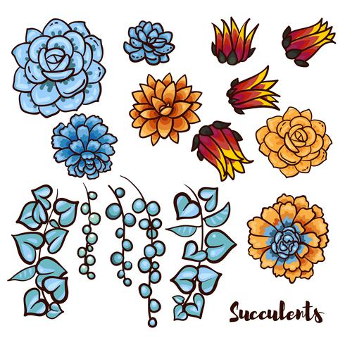 Conjunto de suculentas en el estilo dibujado a mano. vector