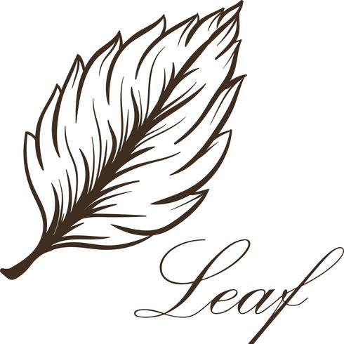 Leaf Vector - Download Free Vector Art, Stock Graphics & Images