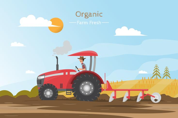 Agricultural work on a field with tractor. vector