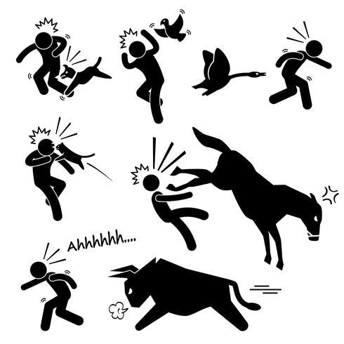 Animal doméstico atacando, ferindo a figura humana ícone de pictograma de vara.