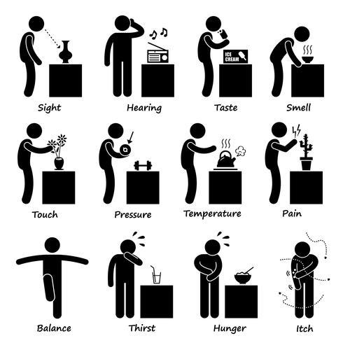 Los sentidos humanos Stick figura pictograma iconos. vector
