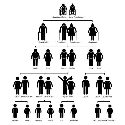 Diagramme de généalogie arbre généalogique icône de pictogramme de bonhomme allumette. vecteur