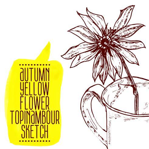 hand drawn yellow flower topinambour sketch