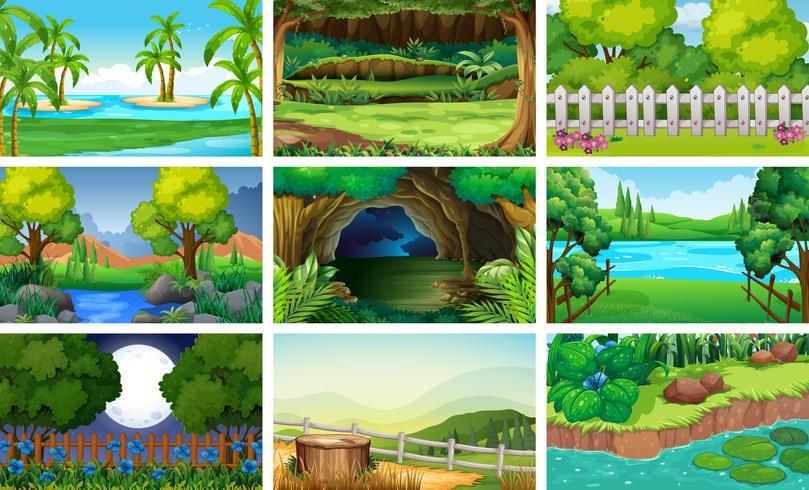 Différentes scènes de forêt et de rivière