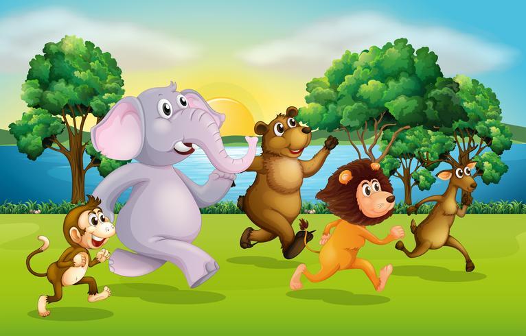 Animali selvatici che corrono nel parco
