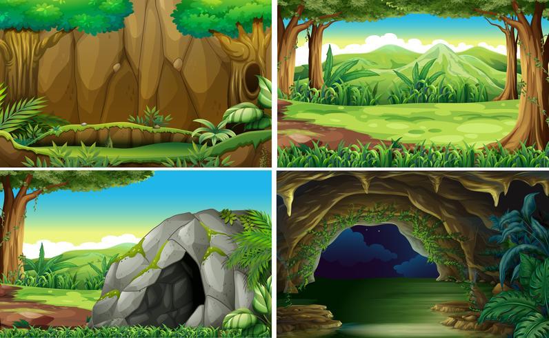 Fyra olika scener av skogar