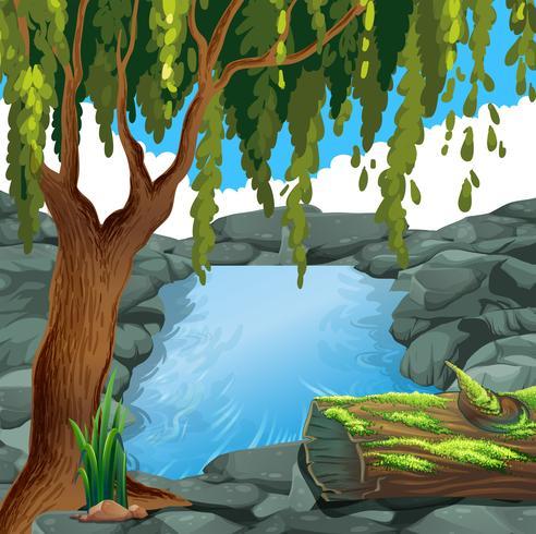 Scène met rivier in bos