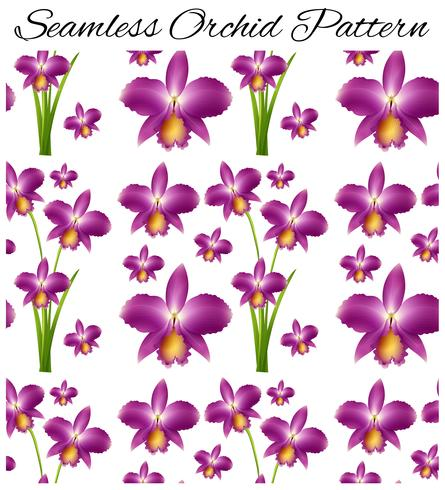 Seamless background with purple orchid vector