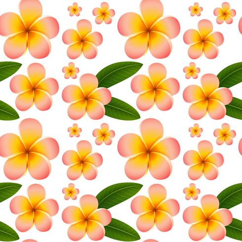 Seamless background with pink plumeria flowers vector