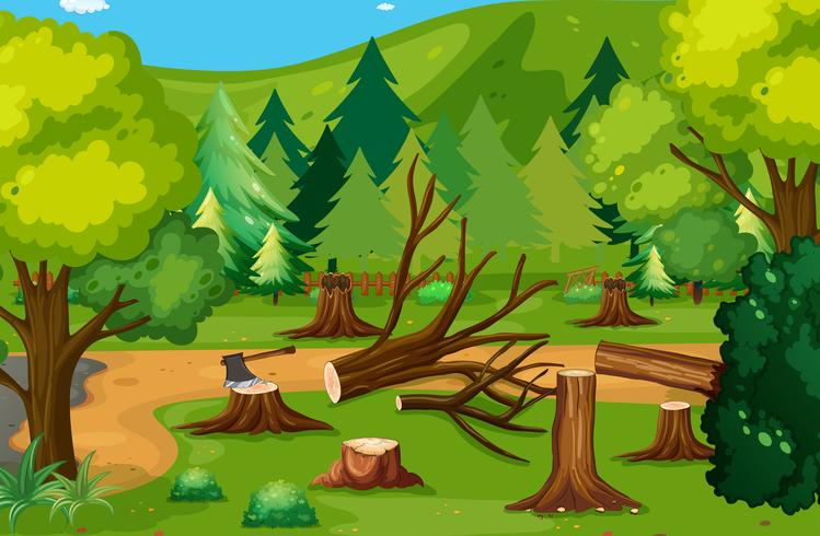Escena de deforestación con maderas cortadas.