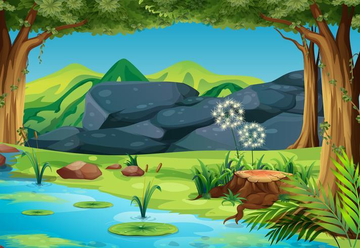 Scena con fiume nella foresta