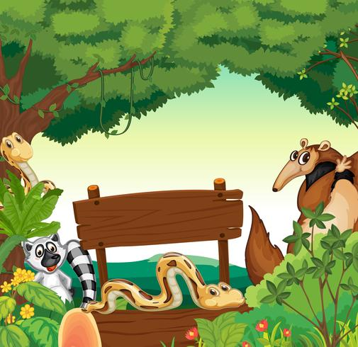 Modelo de sinal com muitos animais na selva