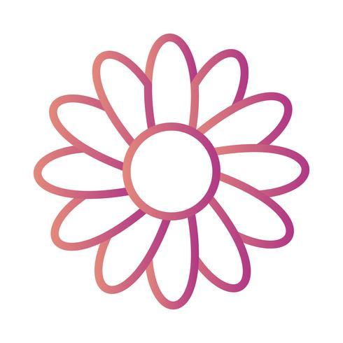 Gänseblümchen-Vektor-Symbol