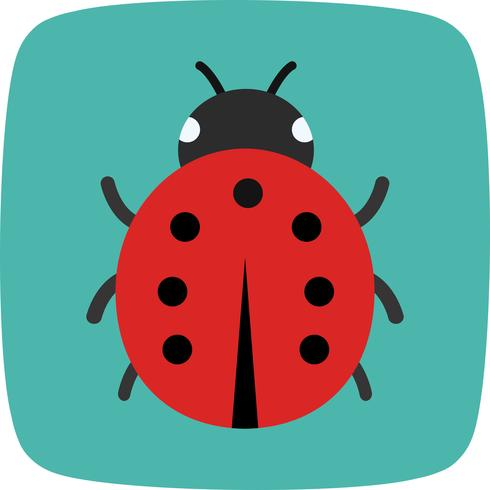 lady bug vector pictogram