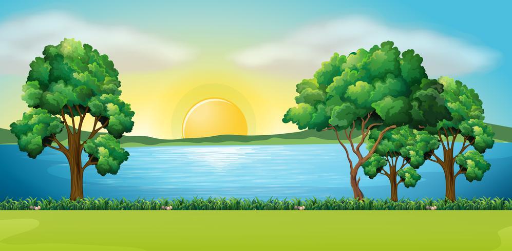 Parkscène bij zonsondergang
