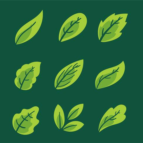 Green Leaves Collection Vector Set - Download Free Vectors ...