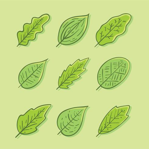 Hand Drawn Green Leaves Collection Vector - Download Free Vectors ...