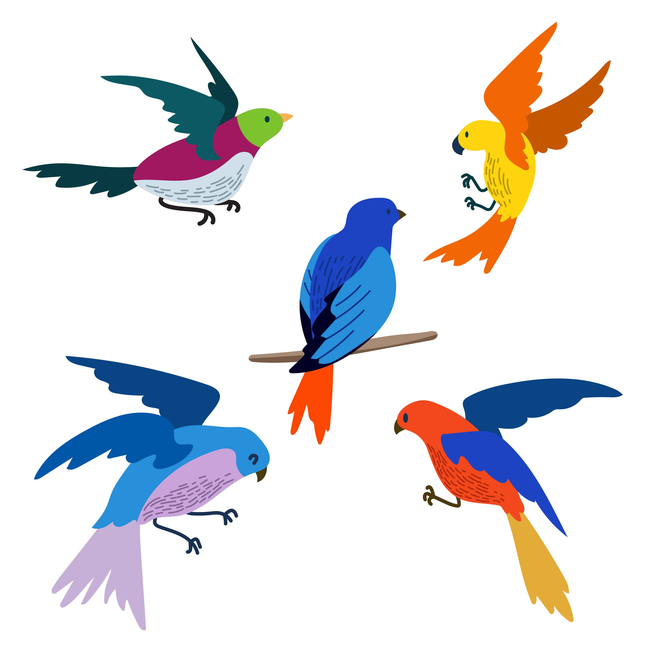 Flying Bird Clipart Set - Download Free Vectors, Clipart Graphics & Vector Art