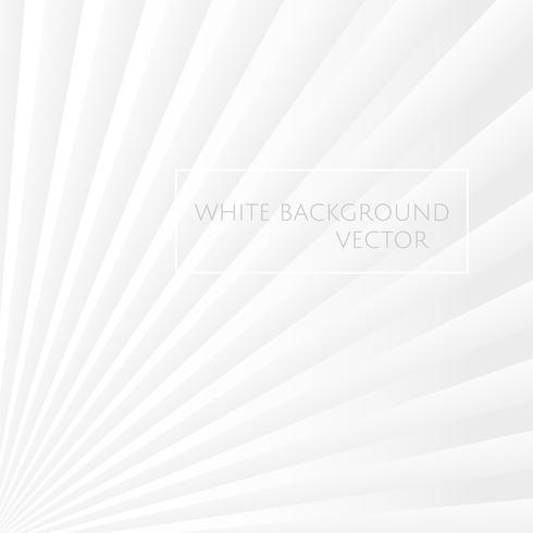Vetor de fundo branco