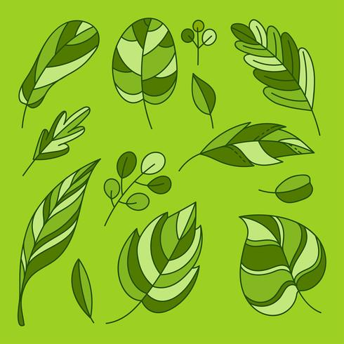 Hand Drawing Flat Green Leaves Clipart Set Vector