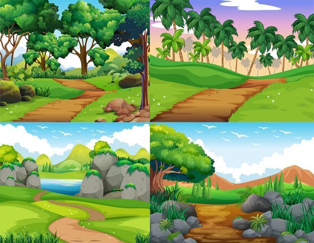 Vier natuurtaferelen met pad in het bos