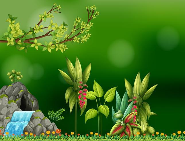 Hintergrunddesign mit Wasserfall und Höhle