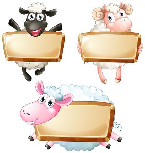 Drei leere Zeichen mit niedlichen Schafen