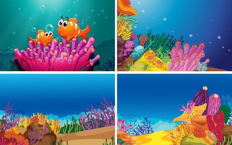 Onderwater scènes