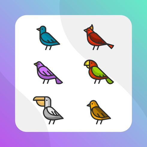 Collection d'illustrations vectorielles plat oiseau coloré