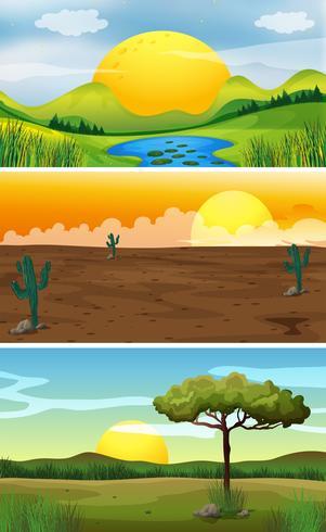 Drie achtergrondtaferelen bij zonsondergang