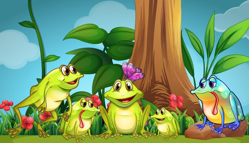 Frogs sitting on the grass