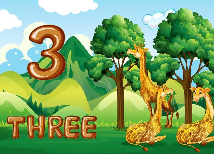 Drie giraffe in de natuur