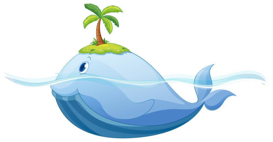 Delphin und Insel im Meer