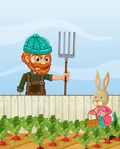 Boer boos op radijs van de konijnoogst