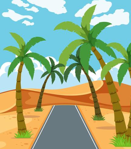 Een prachtige woestijnweg