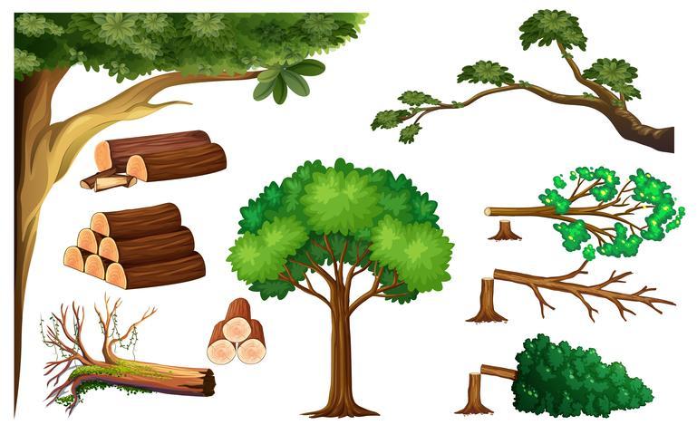 Ein Satz Baum schneiden