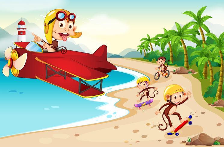 Verspielter Affe am Strand