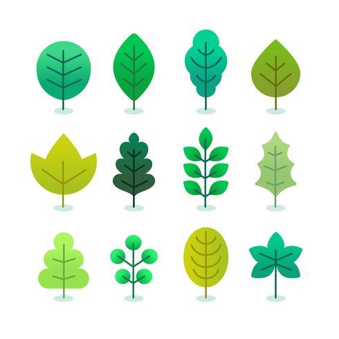 Grüne Blätter Set Vektor