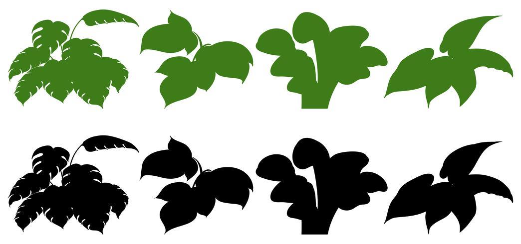 Set di piante silhouette