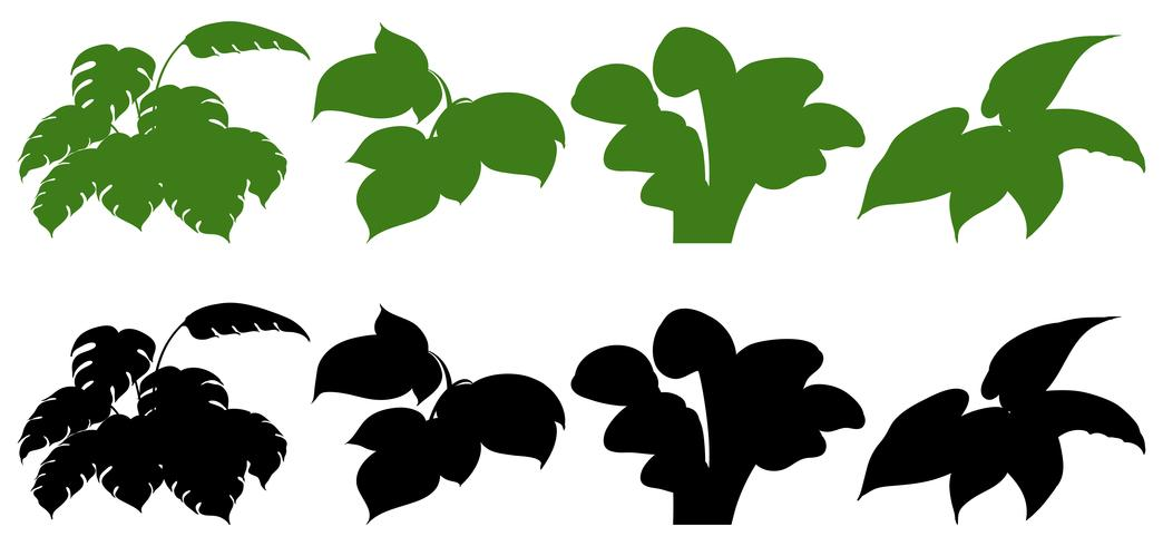 Set van silhouet plant