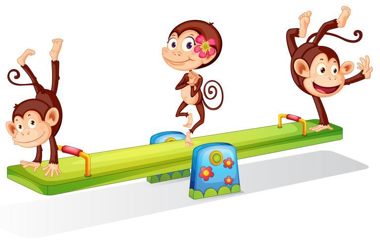 Drie speelse apen die met de wip spelen