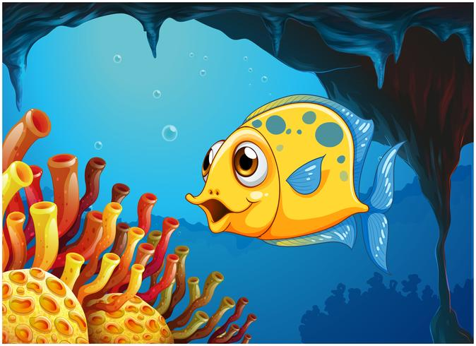Een grote gele vis onder de zee in de zeegrot