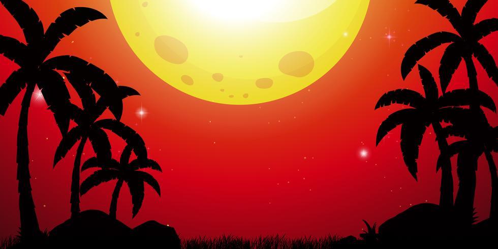 Silhouetscène met kokospalmen