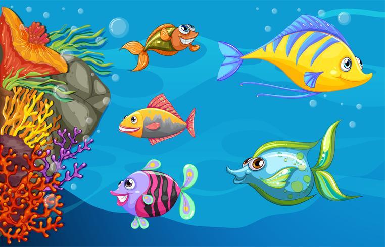 Eine Fischschule unter dem Meer