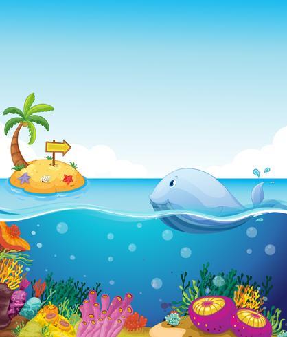 Een vis die het eiland met een pijl bekijkt