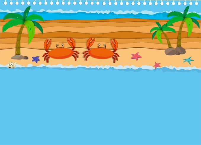 Diseño de la frontera con cangrejos en la playa.