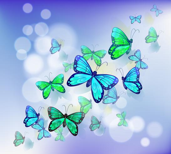 Schmetterlinge in einem Briefpapier