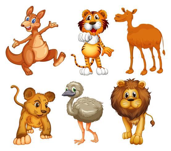 Un grupo de animales salvajes vector