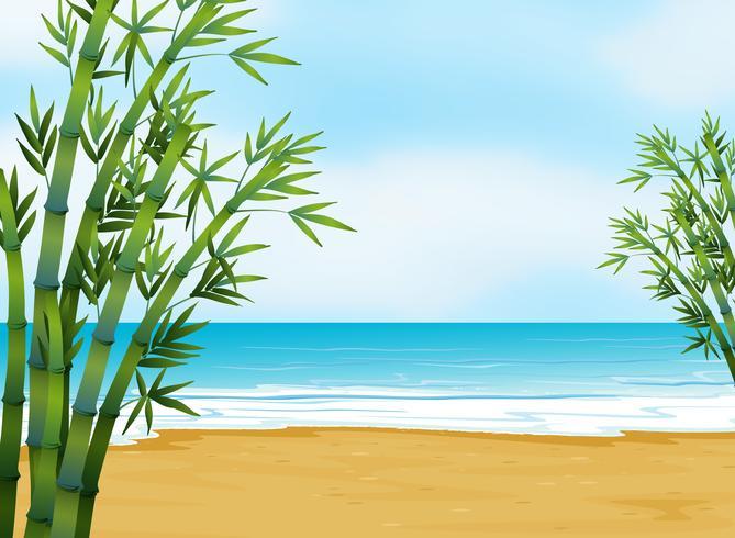 Een uitzicht op het strand
